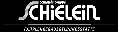 Verkehrsinstitut Schielein – Nürnberg Logo